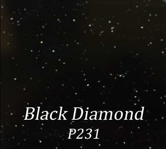 Black Diamond P231